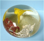 Click here to enlarge image and see more about item g00679: Glass Paperweight