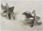 Click here to enlarge image and see more about item j00333: Signed ''Jewel Art'' Sterling Leaf Earrings
