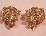Click to view larger image of Rhinestone Earrings (Image1)