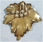 Click here to enlarge image and see more about item j00605: Gold Leaf Pin with Faux Pearls