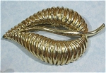 Click here to enlarge image and see more about item j00711: Unmarked Goldtone Leaf Pin