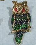 Click here to enlarge image and see more about item j00725: Beautiful Enameled Owl Pin
