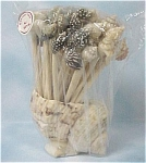 Click here to enlarge image and see more about item k00166: Shell Toothpick Holder