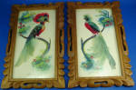 Click here to enlarge image and see more about item m00415: Vintage Feather Art Bird Picture Pair