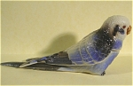 Click here to enlarge image and see more about item n00284: K6191a Blue Budgie Box