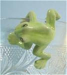 K3171f Climbing Frog