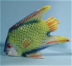 Click here to enlarge image and see more about item n00366: E2841f Tropical Fish