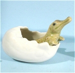 Click here to enlarge image and see more about item n00432: E3561b Hatching Baby Crocodile