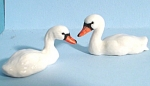 Click here to enlarge image and see more about item n00494: K8591a Swimming Baby Swan Pair