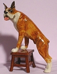 Click here to enlarge image and see more about item n00814: K9441 Boxer on Bench