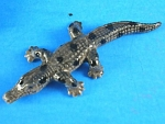 Click here to enlarge image and see more about item n00967: X0681 Tiny Crocodile