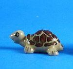Click here to enlarge image and see more about item n01035: X015 Tiny Baby Tortoise