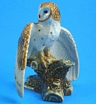 Click here to enlarge image and see more about item n01114: R299 Barn Owl
