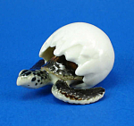 Click here to enlarge image and see more about item n01397: R321B Hatching Sea Turtle