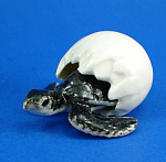 Click here to enlarge image and see more about item n01399: R321C Hatching Sea Turtle