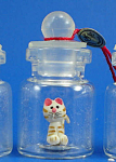 Click here to enlarge image and see more about item n01900: Miniature Cat in a Bottle