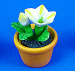 Click here to enlarge image and see more about item n02095: Dollhouse Miniature Ceramic Flower in Clay Pot