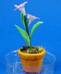 Click here to enlarge image and see more about item n02120: Dollhouse Miniature Flower in Clay Pot