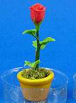 Click here to enlarge image and see more about item n02121: Dollhouse Miniature Red Rose in Clay Pot