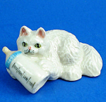 Click here to enlarge image and see more about item n02235: K901 Persian Kitten with Baby Bottle