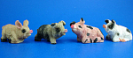 Miniature Pig Set of Four