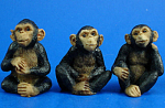 Miniature Chimpanzee Trio