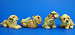 Click here to enlarge image and see more about item n02480: Miniature Lab Puppy Set of Four