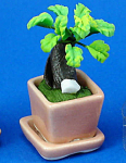 Click here to enlarge image and see more about item n02554: Dollhouse Miniature House Plant