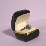 Click here to enlarge image and see more about item pt00861: Arcadia Miniature Ring in Ring Box Salt Shaker