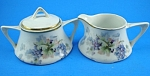 Click here to enlarge image and see more about item pt01051: ZS and Co. Porcelain Cream and Sugar Set