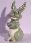 Click here to enlarge image and see more about item w00331: 1930s Wade Rabbit