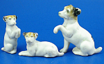 Click here to enlarge image and see more about item xa06236: Miniature Bisque Terrier Dog with Two Puppies