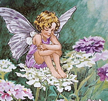 Villeroy & Boch Heinrich Candytuft Fairy plate (Image1)