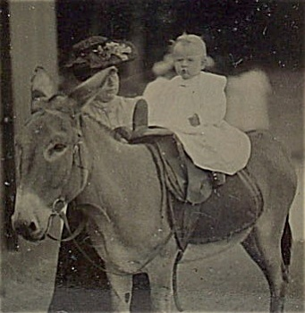 Tintype � Mom Holding Baby on Donkey. (Image1)