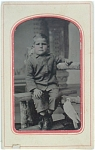 Click here to enlarge image and see more about item 1394: TINTYPE 1/6th PLATE – LITTLE BOY WITH BIRD.