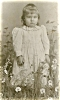 "Click to view larger image of CABINET PHOTO – GIRL IN ""FIELD"" OF DAISIES (Image2)"