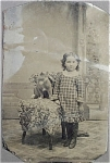 Click here to enlarge image and see more about item 4205: Tintype of Young Girl with Her CAT.