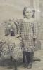 Click to view larger image of Tintype of Young Girl with Her CAT. (Image2)