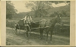 Click here to enlarge image and see more about item 4409: CABINET PHOTO �FISH CART PULLED BY OLD DOLL.