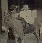 Click here to enlarge image and see more about item 4703: Tintype – Mom Holding Baby on Donkey.