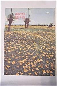 Arizona Highways, Vol. 15, No. 4, April 1949 (Image1)