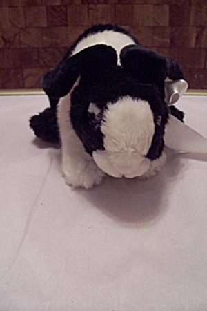 Black & White Bunny (Image1)