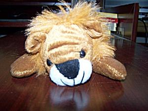 Lion (Image1)