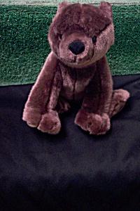 Audio ISP Brown Stuffed Bear (Image1)