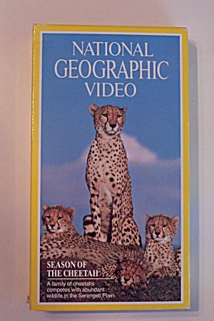 Seasons Of The Cheetah (Image1)