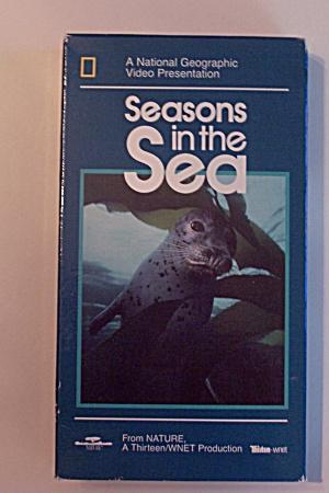 Seasons in the Sea (Image1)