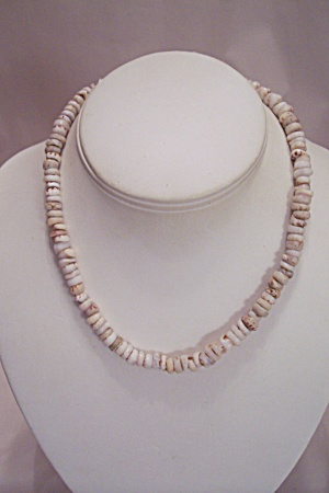 Puk Seashell Necklace