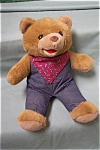 Click here to enlarge image and see more about item TSA0003: Western Musical Bear