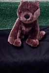 Click here to enlarge image and see more about item TSB0029: Audio ISP Brown Stuffed Bear
