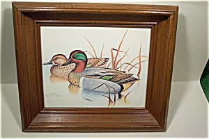 Wood Duck Print By Gregory F. Messier